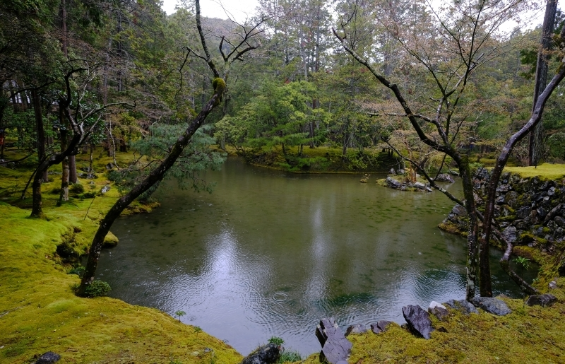 京都の旅 \'19 その2_e0000910_10004317.jpg
