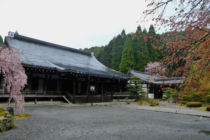 京都の旅 \'19 その2_e0000910_10113079.jpg