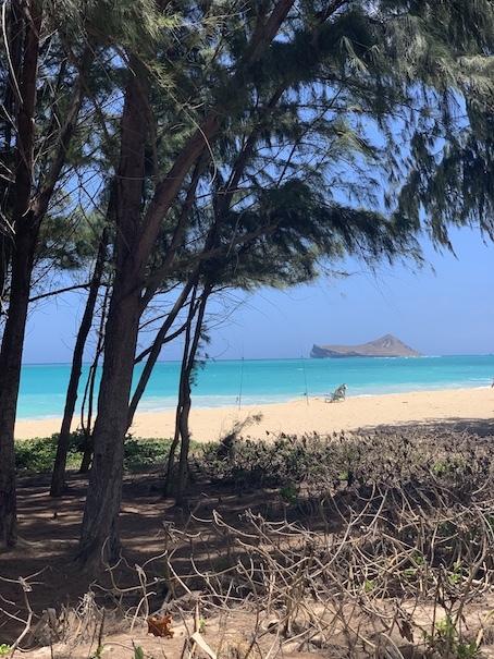 ハワイの海〜ワイマナロ!_c0187025_09230083.jpg