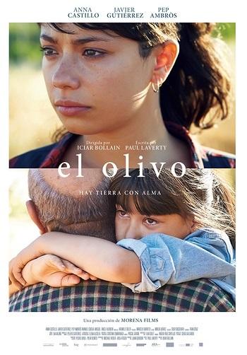 オリーブの樹は呼んでいる El Olivo_e0040938_13511773.jpg