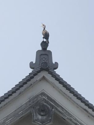 京都は夏だった_c0341450_03421831.jpg