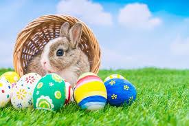 Happy Easter! (4/27)_c0200361_08441753.jpg