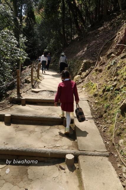 孫と嵐山 モンキーパークへ_b0055171_00262619.jpg