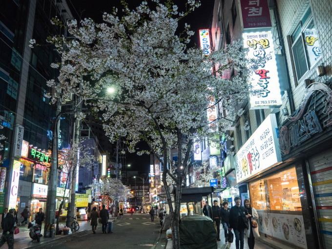 平成最後の海外旅行はデルタのマイルを使ってソウルへ(1)_f0276498_13253817.jpg