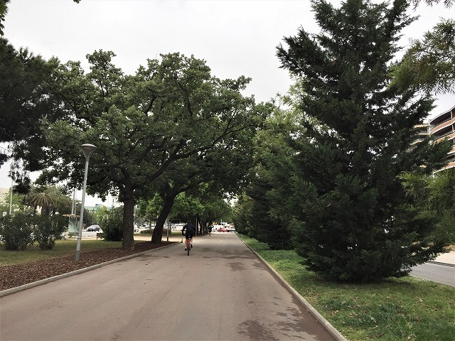 バラ公園の散策_b0064411_00530242.jpg