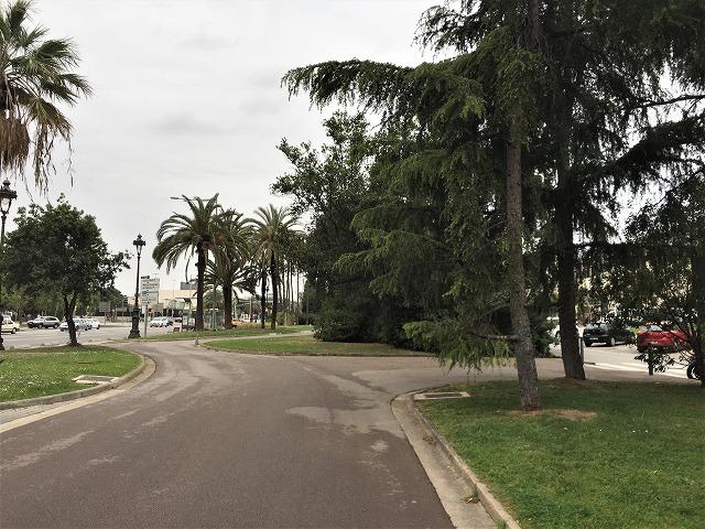 バラ公園の散策_b0064411_00530251.jpg