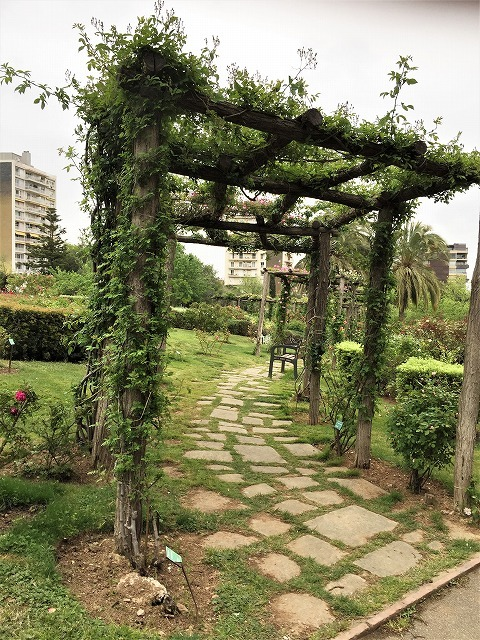 バラ公園の散策_b0064411_00593730.jpg