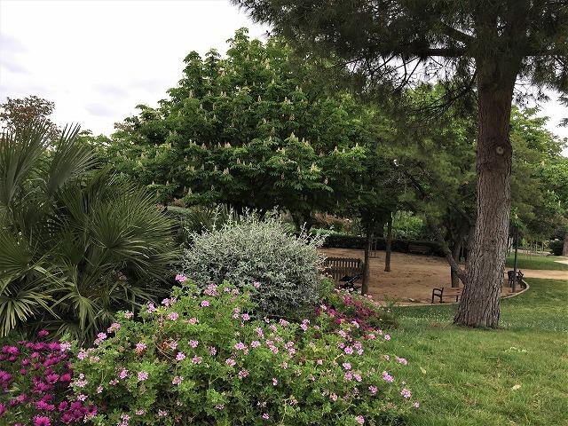 セルバンテス公園から続く遊歩道_b0064411_01250366.jpg
