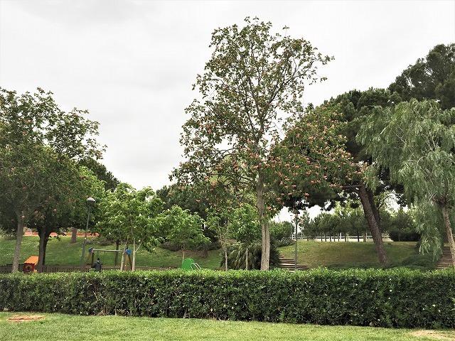 セルバンテス公園から続く遊歩道_b0064411_01250499.jpg