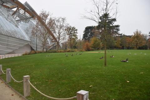 <パリ探訪> フランク・ゲーリー「ルイ・ヴィトン美術館」(1) Paris, Frank Gehry, Fondation Louis Vuitton_a0147436_15555624.jpg