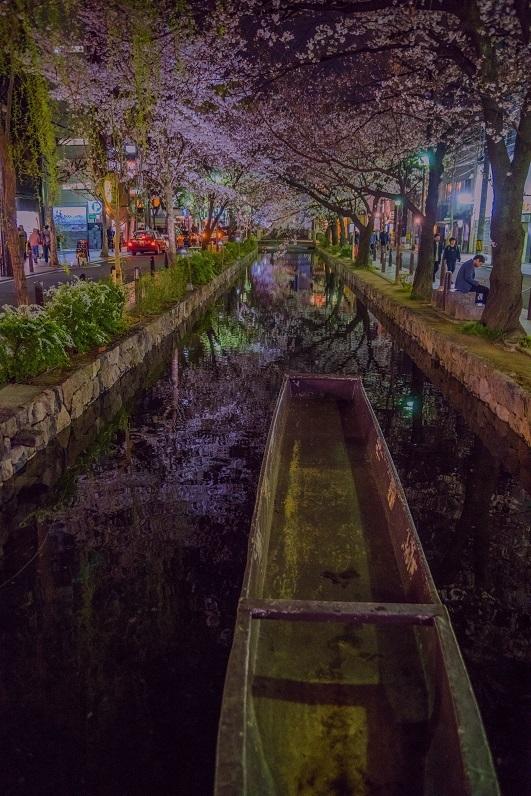 2019京都桜~木屋町通り・高瀬川沿いの桜_e0363038_11002215.jpg