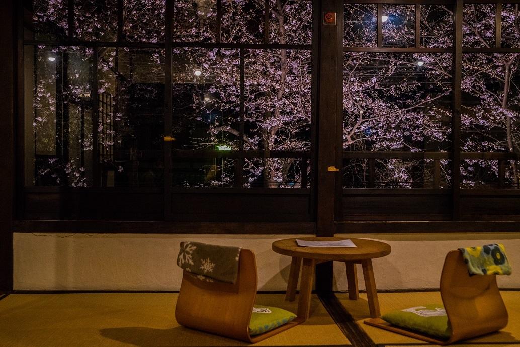 2019京都桜~高瀬川沿いから_e0363038_12521452.jpg