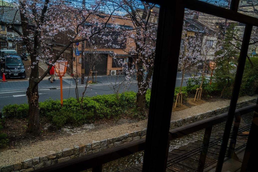2019京都桜~高瀬川沿いから_e0363038_12522784.jpg