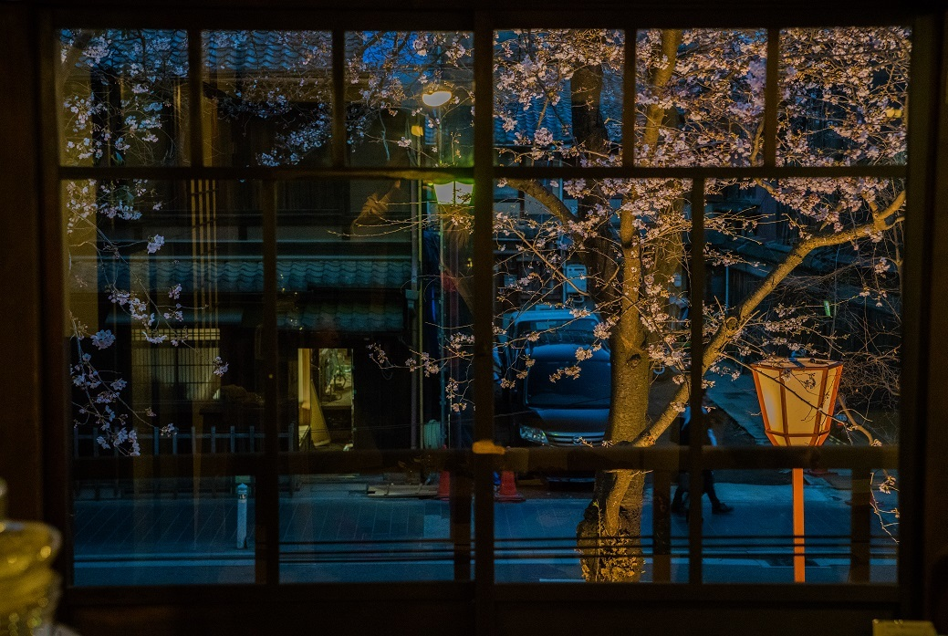 2019京都桜~高瀬川沿いから_e0363038_12524047.jpg