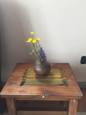 春の野花_d0136540_04323091.jpg