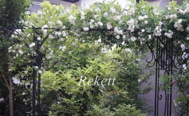 ガーデン&テラスにお勧めな噴水~❤_f0029571_21223726.jpg