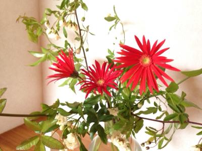 花と母の癒し & 春の花まつり・追記あり!***_e0290872_20492006.jpg