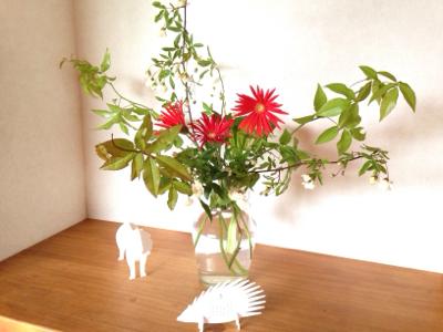 花と母の癒し & 春の花まつり・追記あり!***_e0290872_20492085.jpg