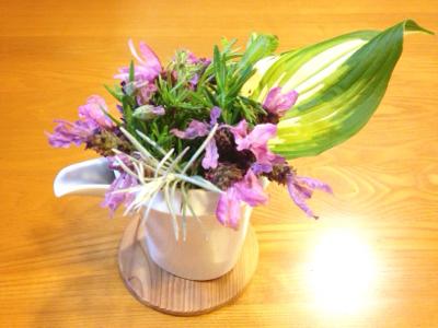 花と母の癒し & 春の花まつり・追記あり!***_e0290872_20492427.jpg