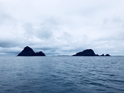 「海洋調査」_b0033573_19212498.jpg