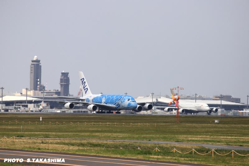 ANA A380 FLYING HONU _b0368378_22050156.jpg
