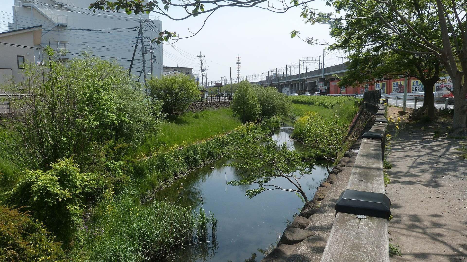 新緑の沼と川 【 2019 4/23(火) 】_a0185081_00004914.jpg