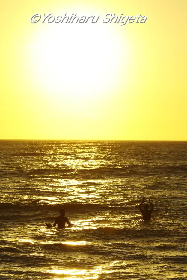 〜Surfing buddy〜_c0152400_21321849.jpg