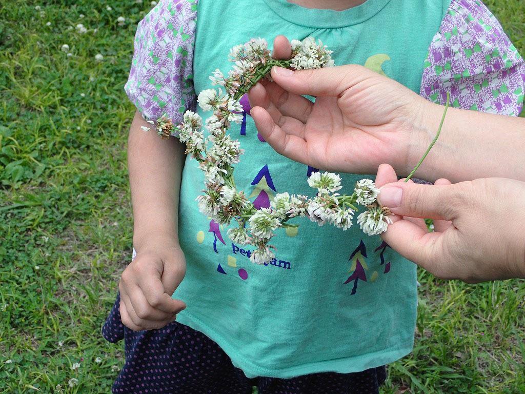 すみればの野花と遊ぼう_b0049307_11483445.jpg