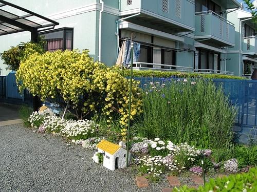 黄色の壁_f0129726_23000917.jpg