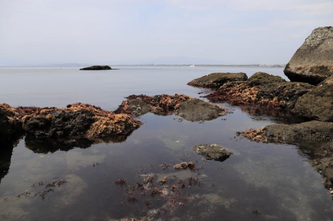 江の島散策 part 1_f0348831_20343210.jpg