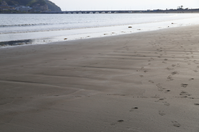 江の島散策 part 2_f0348831_21151591.jpg