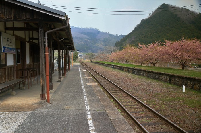岩山駅の桜_f0371447_19332838.jpg