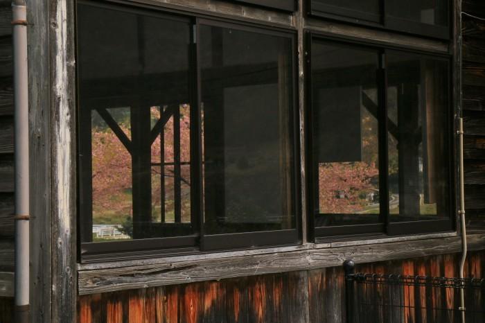 岩山駅の桜_f0371447_19375105.jpg