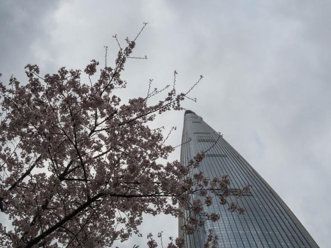 平成最後の海外旅行はデルタのマイルを使ってソウルへ(3)_f0276498_16181522.jpg