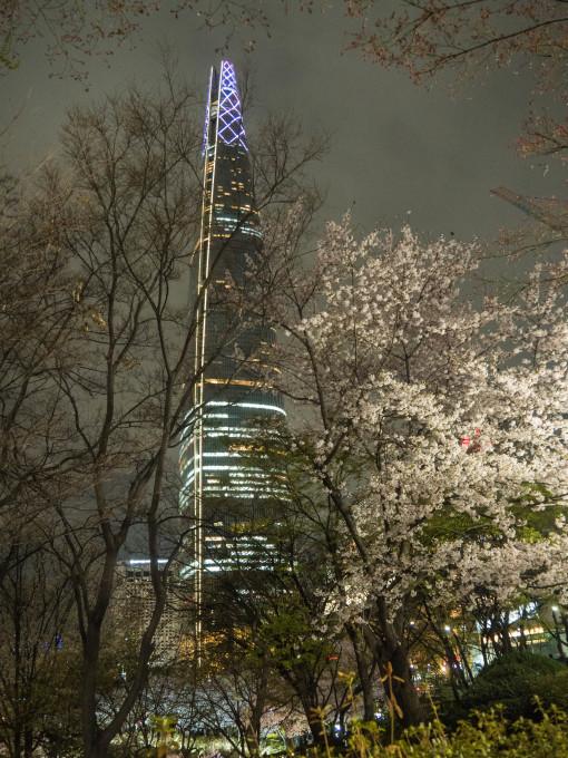 平成最後の海外旅行はデルタのマイルを使ってソウルへ(3)_f0276498_16353446.jpg