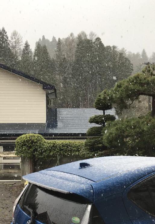 本当に雪が降ってます_d0322040_16265994.jpg