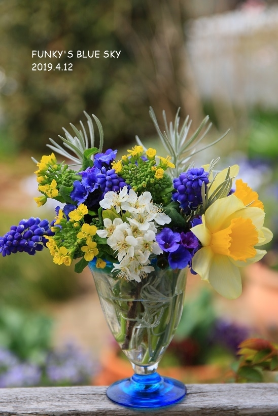 庭の小さなブーケ** (4月12日)_c0145250_09572445.jpg