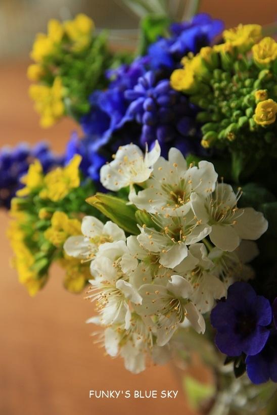 庭の小さなブーケ** (4月12日)_c0145250_09572751.jpg