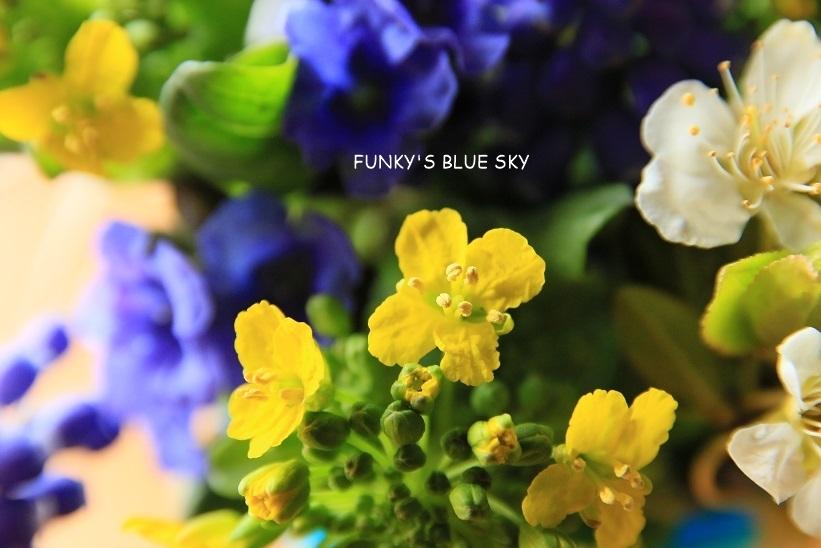 庭の小さなブーケ** (4月12日)_c0145250_09573029.jpg