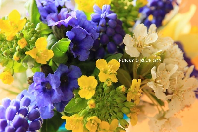 庭の小さなブーケ** (4月12日)_c0145250_09575648.jpg