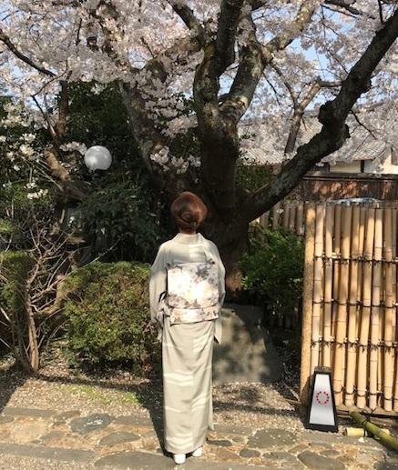 北野をどり最終・螺鈿兎帯・桜の簪・連休の営業。_f0181251_17235994.jpg