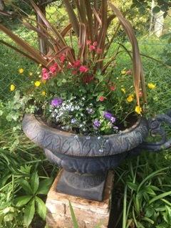 大鉢の植栽_a0094959_15292734.jpeg