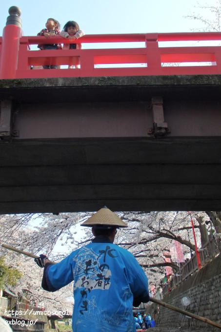 桜と橋と_b0324291_23355712.jpg