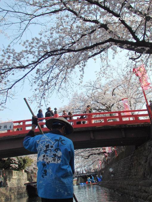 桜と橋と_b0324291_23360238.jpg
