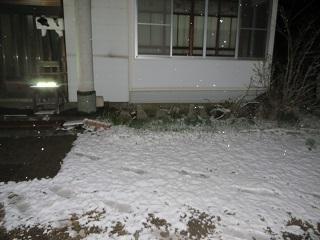 予報通り、雪になりました_b0405523_12380746.jpg
