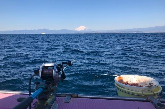 海釣り体験。_f0348831_23203813.jpg