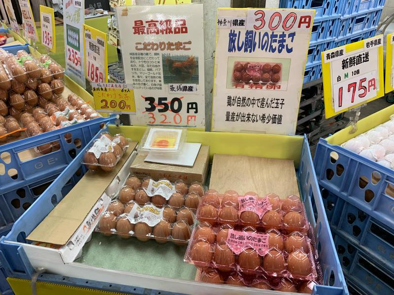 大東京綜合卸売センターで名物ねぎとろ丼_a0359239_11571049.jpg