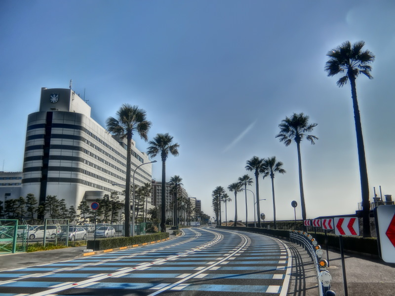 千葉 舞浜  (1)_b0408745_22284395.jpg