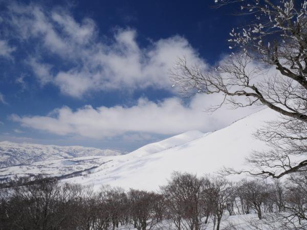 月山でスキー!_a0351368_21062808.jpg