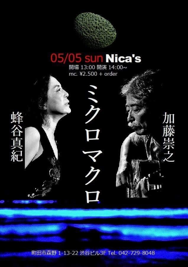 蜂谷真紀 Maki Hachiya 2019:5月~6月 live schedule_d0239981_16193802.jpg